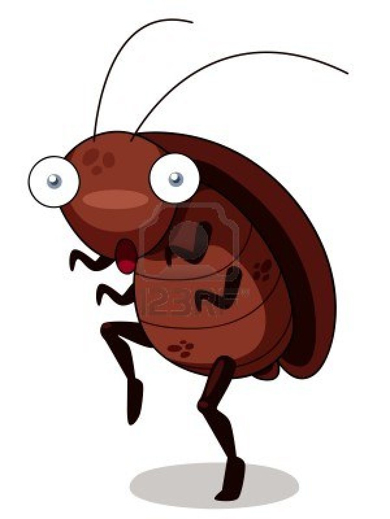 cockroach-cartoon2